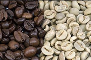 Le café bien torréfié contient moins de caféine