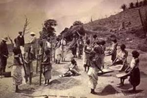 La récolte du café en Amérique du Sud