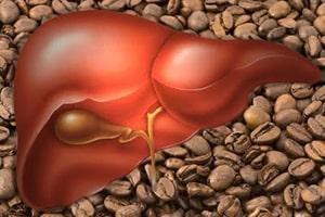 Le café protège le foie